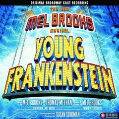 the new mel brooks musical - young frankenstein