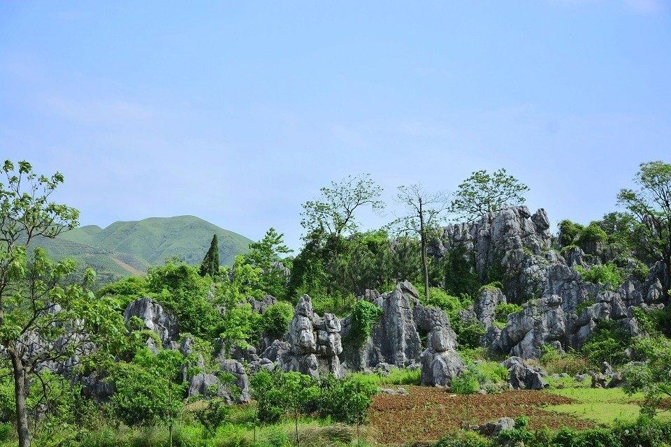 湖南石林风景区