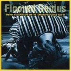 floored genius the best of julian cope and the teardrop explodes 1979-1991