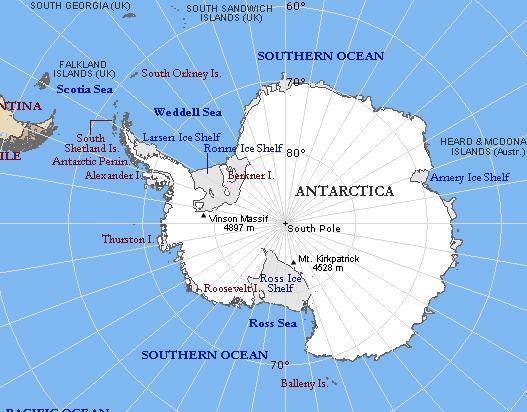 """地衣和藻类,动物和鸟类也较多,故南极半岛有""""南极绿岛""""之称."""