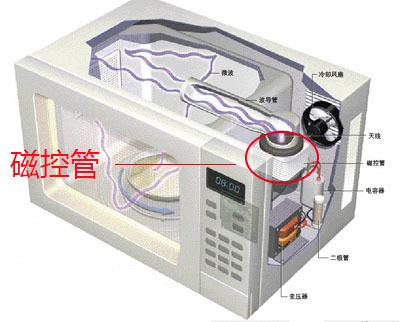 求微波炉内部结构图,磁控管的位置
