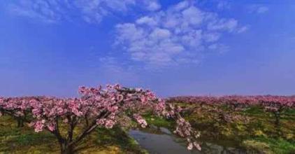 有木有知道关于襄阳长寿岛**的?速度