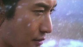 飞跃的心 电视剧 《精忠岳飞》 主题曲