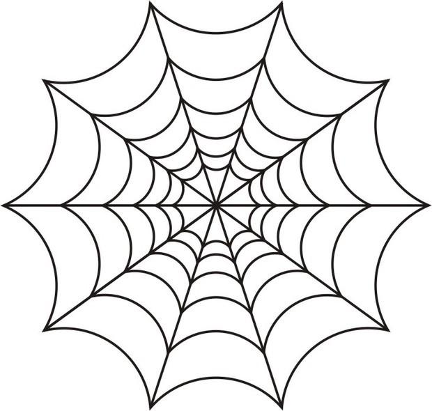 可爱蜘蛛简笔画图片