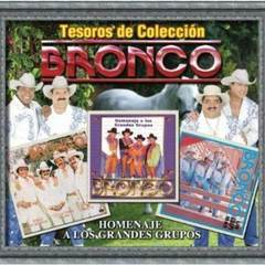 tesoros de coleccion - bronco - homenaje a los grandes grupos